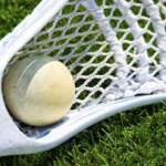 Champlain now offers Lacrosse!